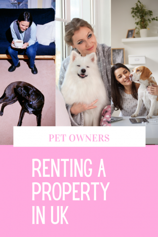 Pet owners Renting Property UK