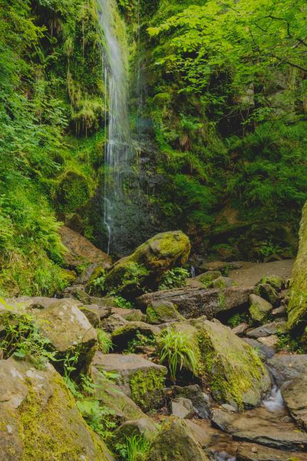 The Beauty Of Alaska: Travel Guide
